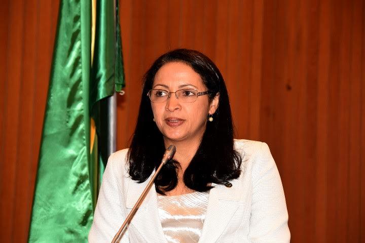 Deputada Francisca Primo cobra ação visível no combate ao mosquito Aedes aegypti