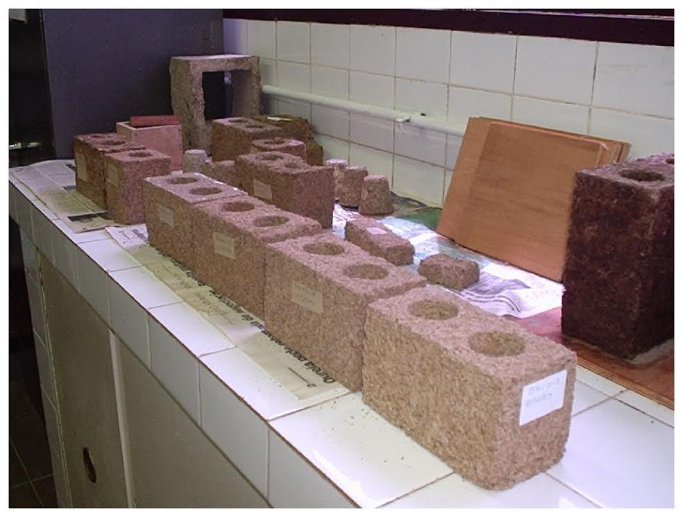 Sustentabilidade: Blocos para construção civil são produzidos com resíduos de madeira