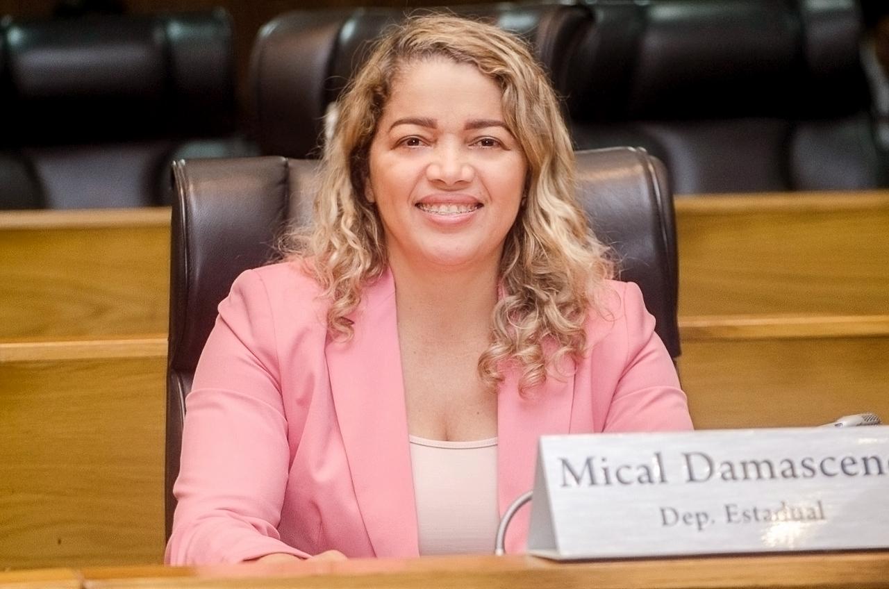 Mical Damasceno solicita asfaltamento para povoado de Viana