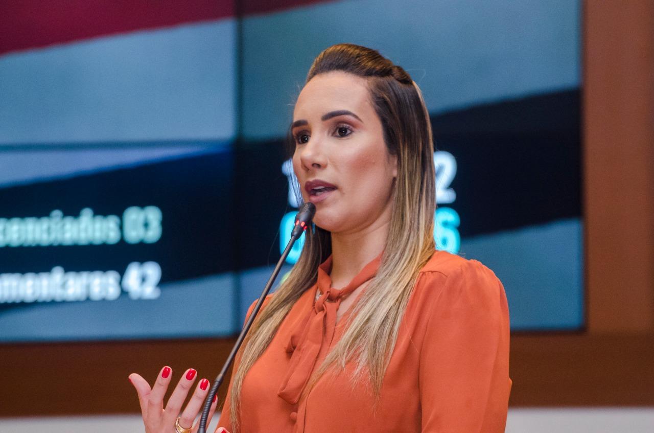 Deputada Thaiza Hortegal solicita melhorias na rodovia MA-006