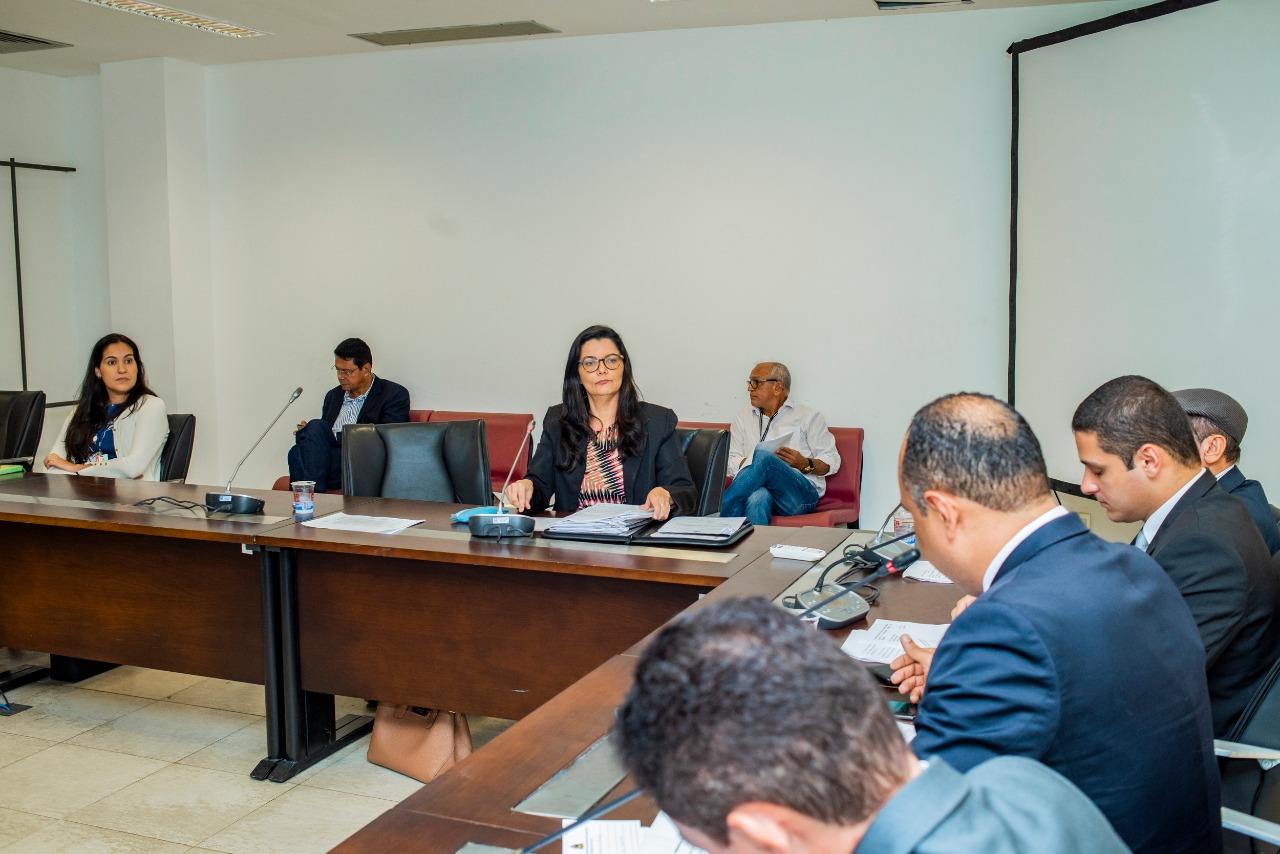 A presidente do Conselho Estadual de Educação, Soraia Raquel, foi a segunda a falar durante a CPI